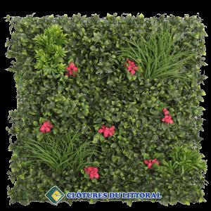 mur vegetal bougainvillier